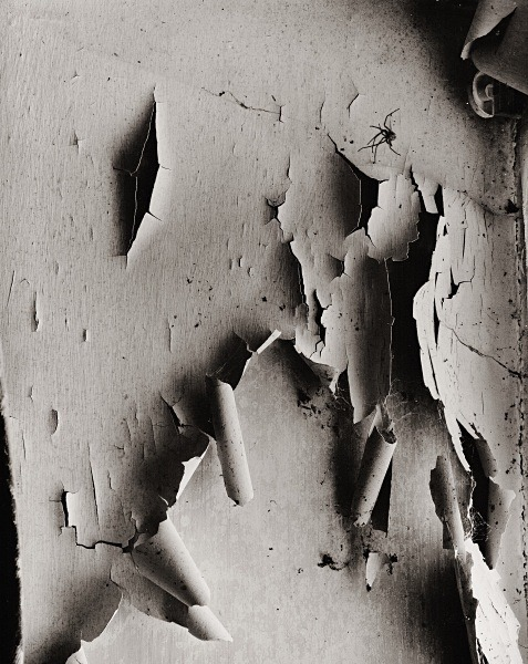 ABSTRACTION, Henllan, Ceredigion 2015 - ABSTRACTIONS