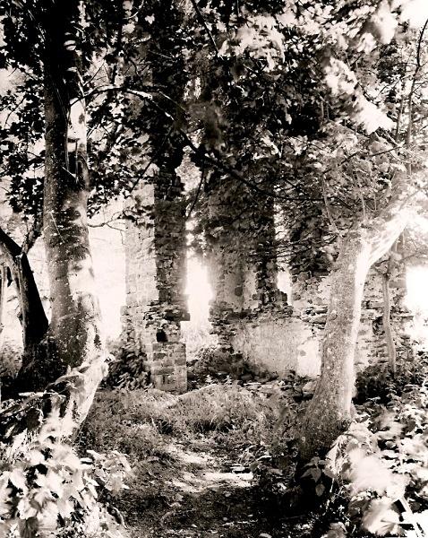 peterwell lampter llan-bedr-pont-stephan lost houses of wales thomas herbert lloyd