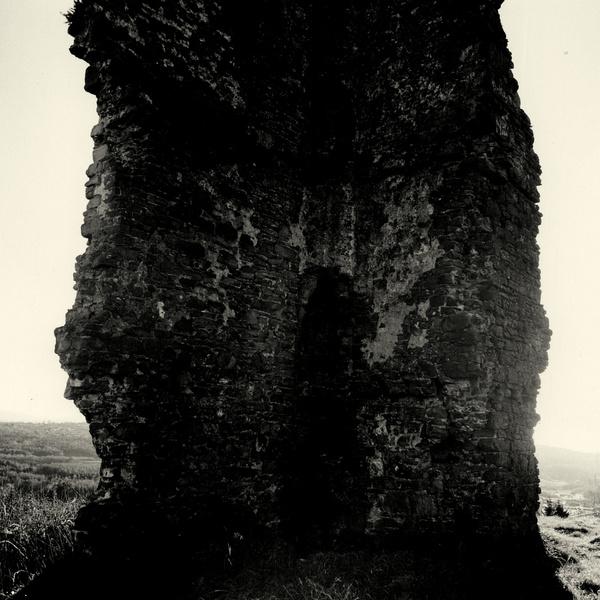 MORRIS CASTLE or CASTELL GRAIG, Swansea 2016 - OTHER WELSH RUINS