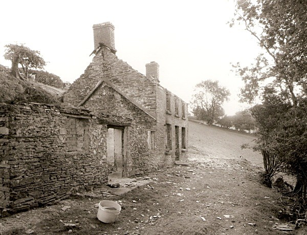 TYNGRAIG, Devil's Bridge, Ceredigion 2010 - CEREDIGION FARMHOUSES