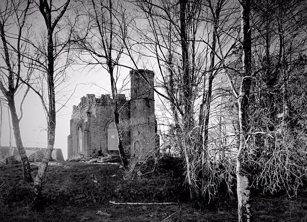 BELVEDERE FOLLY, Swansea 2017 - OTHER WELSH RUINS