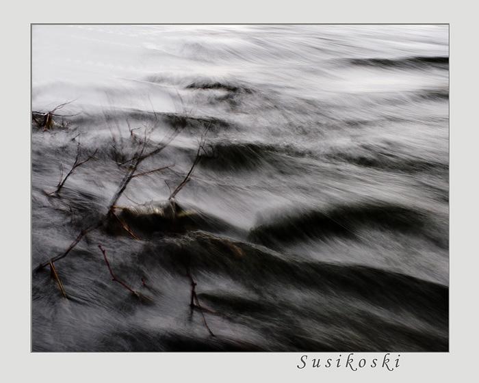 December 2 - Susikoski