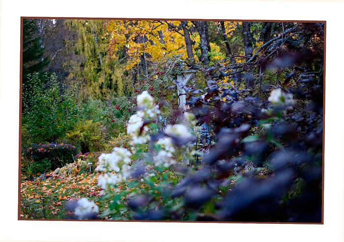Kibuvitsi's Garden 3 - Parks and Gardens