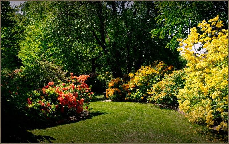 Kotka Fuksinpuisto 2 - Parks and Gardens