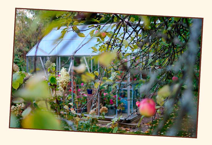 Kibuvitsi's Garden 1 - Parks and Gardens