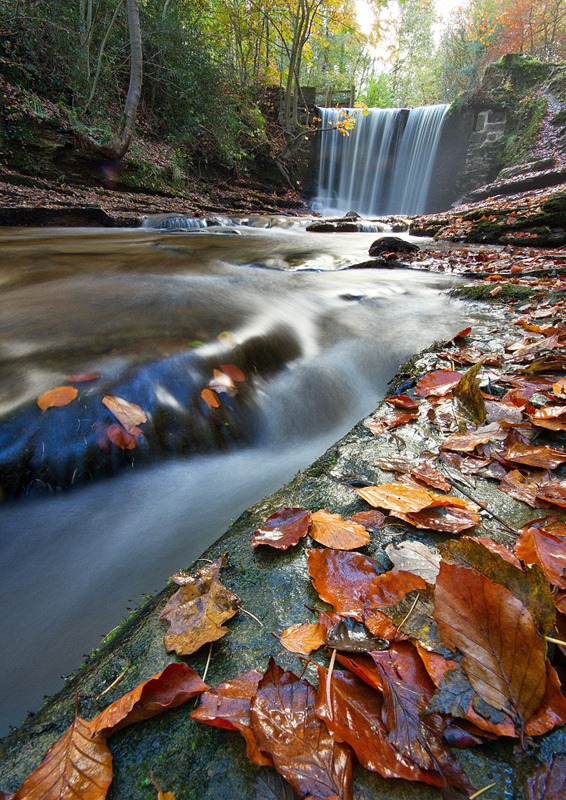 Bersham Falls - North Wales Landscapes