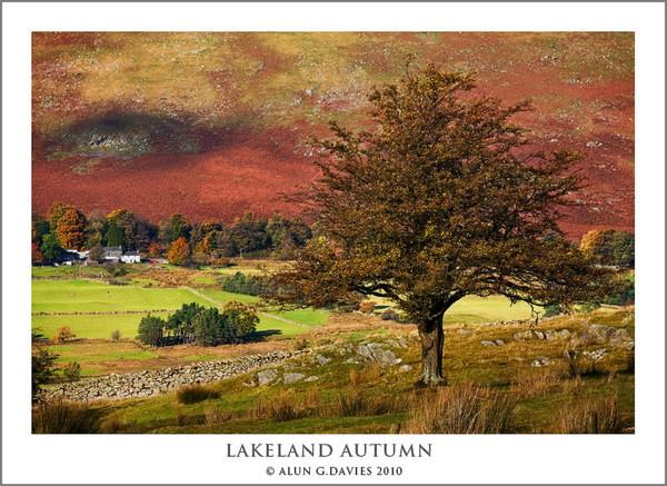 - Ardal Y Llynnoedd / The Lake District