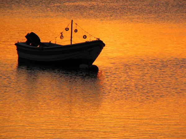 Alvor Boat - Algarve