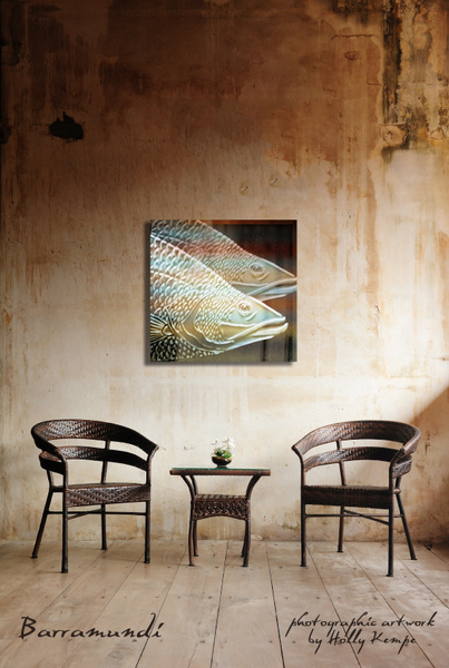 Barramundi - Artwork Displayed in a Room