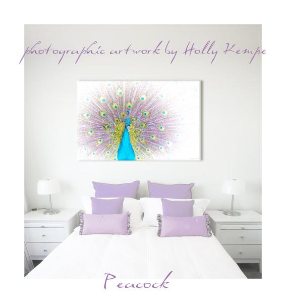Peacock - Artwork Displayed in a Room