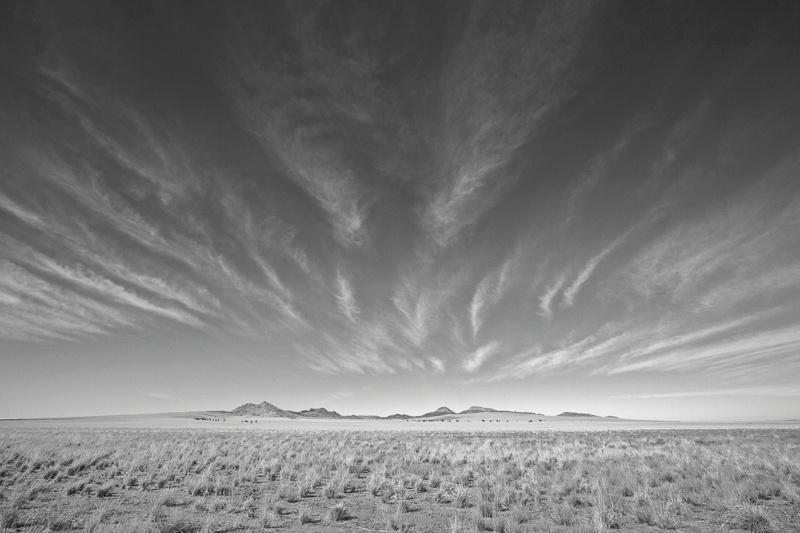 Desert Grassland - Namibia - 2014