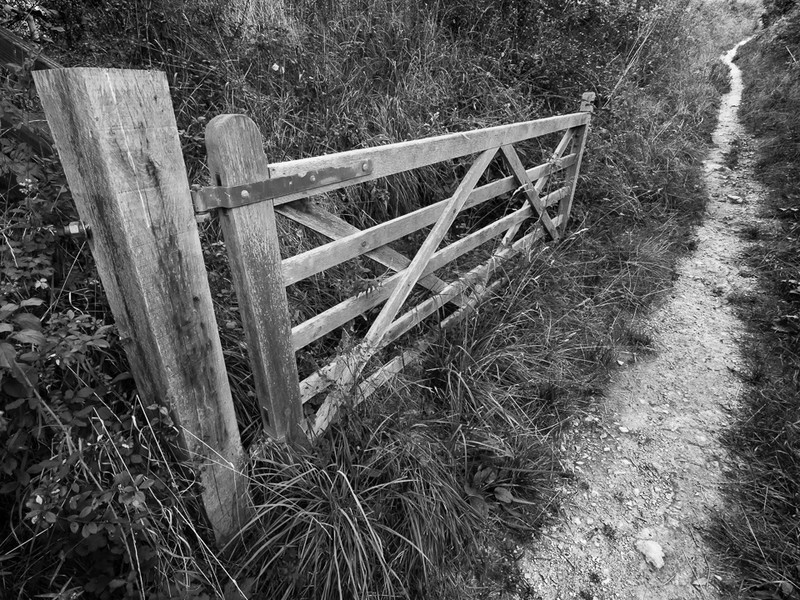 Day 42 - The Way Up - On Bredon Hill - 2016