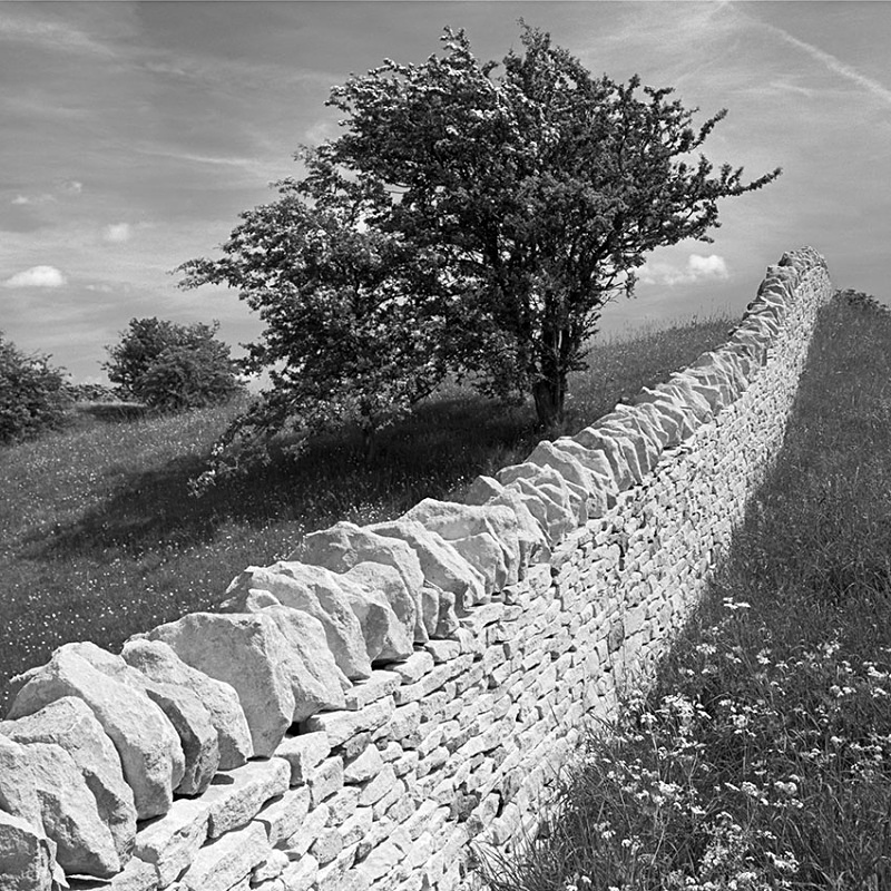 2141 - New Cotswold Drystone Wall - The Cotswold Way