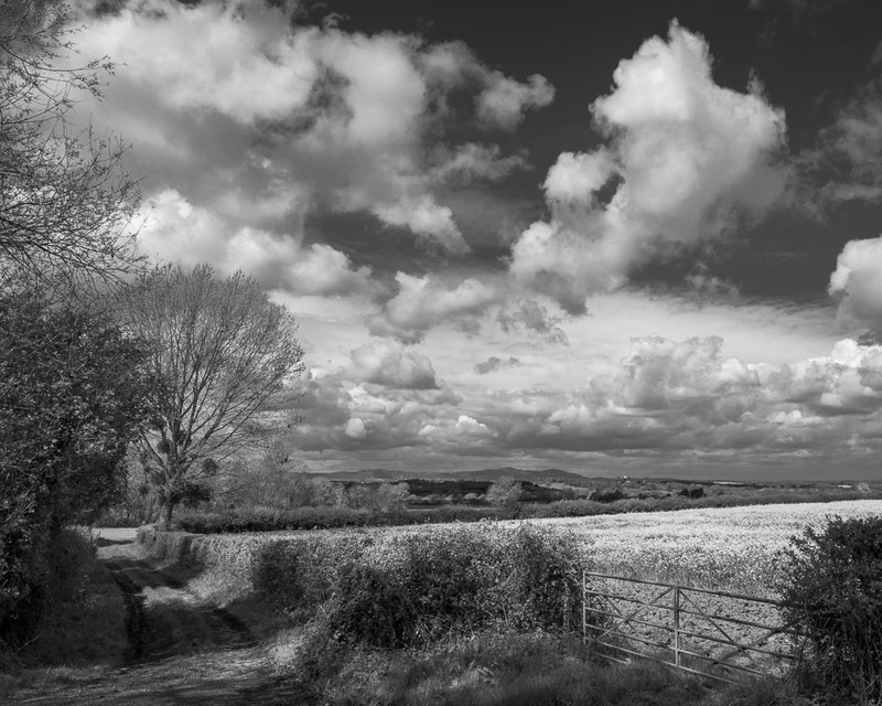 Day 22 - April Sky Over The Malverns - On Bredon Hill - 2016