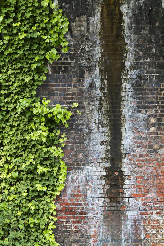 Under Ivy Bridge - Worcester Birmingham Canal