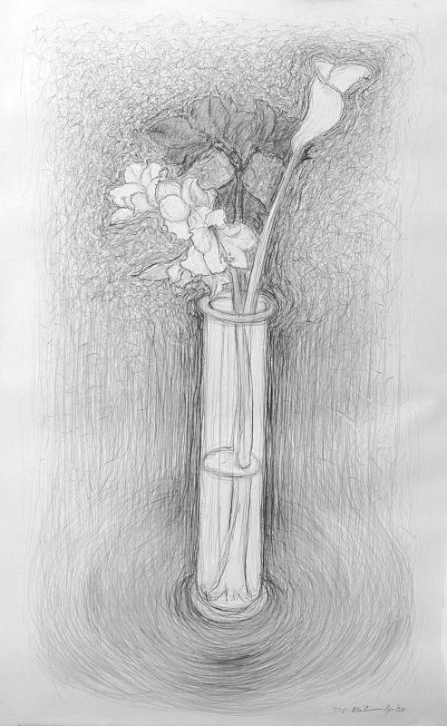 Energetic line 36in x 60 in - Flower Drawings