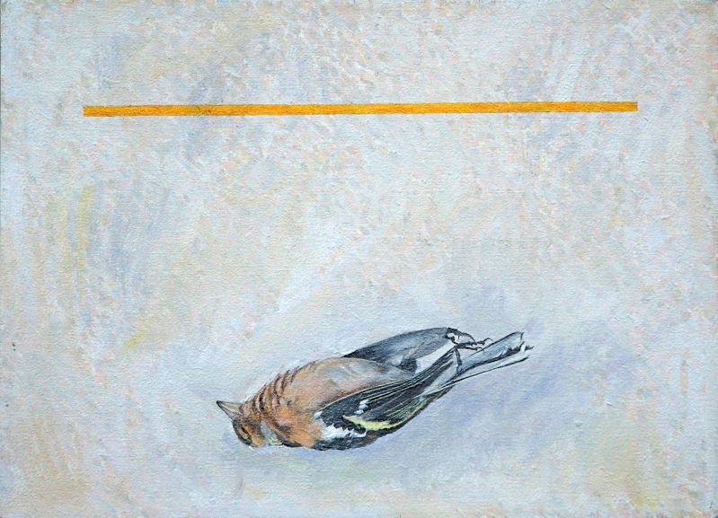 Floating Yellow 2  330mm x 250mm - Bird Paintings
