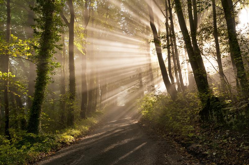 Morning rays, Castleton - Peak District & surrounding area