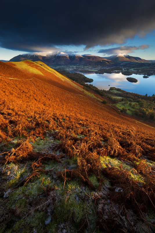 Skelgill Bank first light - Lake District & Cumbria