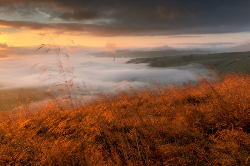 Gold Rush, Derbyshire. - Landscape Photographer of the Year awards, 2011, 2012, 2013, 2014, 2015, 2016...