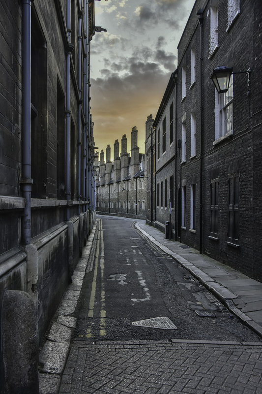 Trinity Lane at Dusk - Landscapes