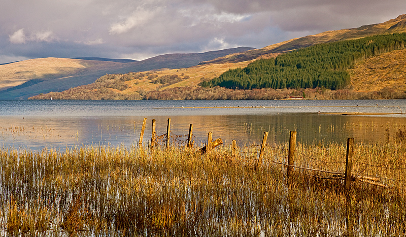 The West waters of Loch Tay - Latest Additions