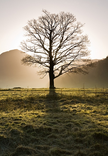 Sharing the light - Lake District - Inland and Coastal England