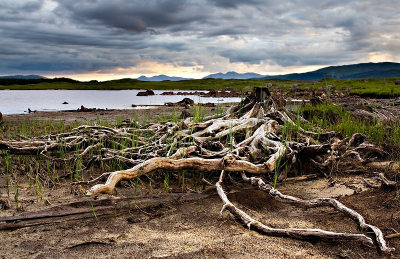 Nature's Ruins - Loch Eigheach - Inland Scotland