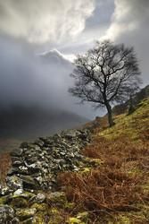 Cumbria portfolio