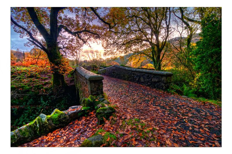 Bridge over the Buchan burn - The Light Captured