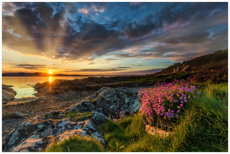 Sunset Bouquet - Ayrshire Gallery