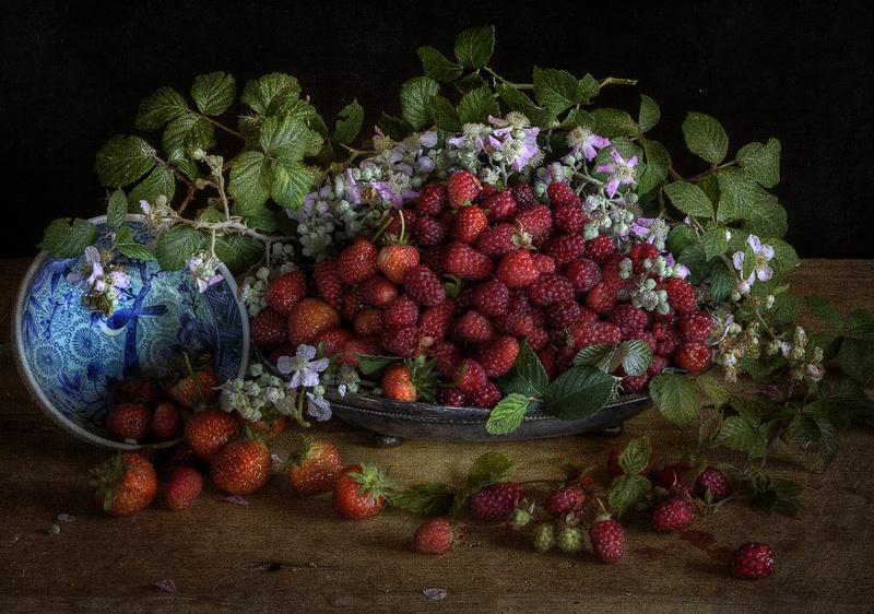- Still Life : Everything in the Garden Series