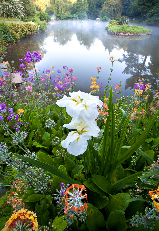 - Devon Gardens