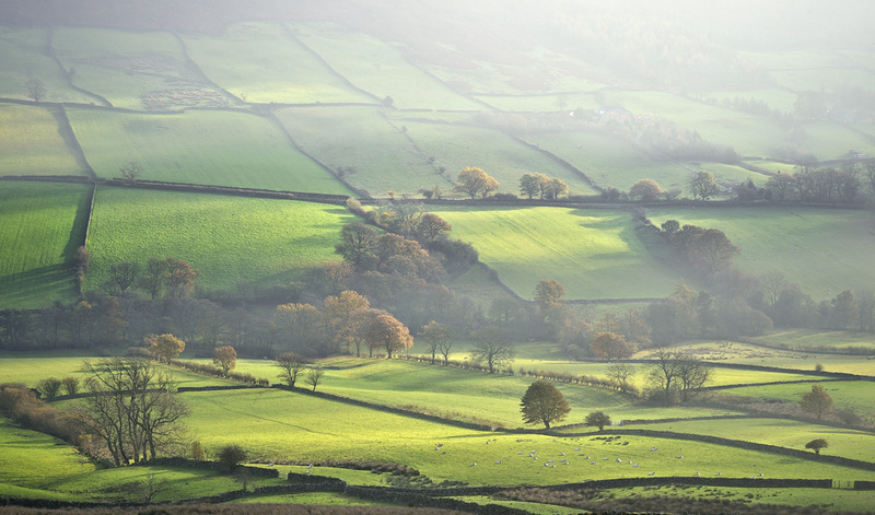 Clearing mist - Whitby & surrounding areas