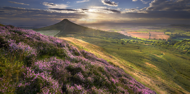 Summer Glow - Roseberry Topping - Recent Photographs