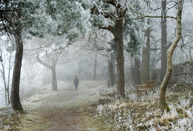'Winter Wonderland' - Yorkshire Dales