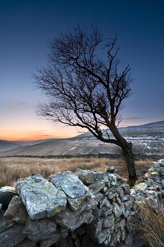 'Frosty Morning 1' - Yorkshire Dales - Yorkshire Dales