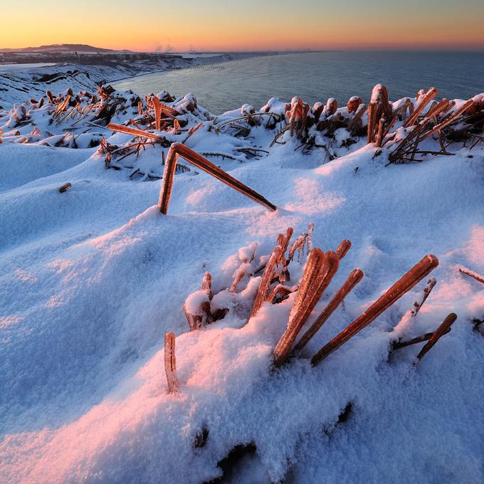 Ice sculptures 2 - Square Format