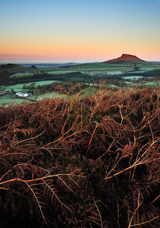Roseberry Topping 2 - Low Lying Frost. (Portrait) - Roseberry Topping