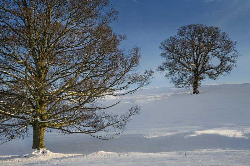 In Harmony - Yorkshire Dales