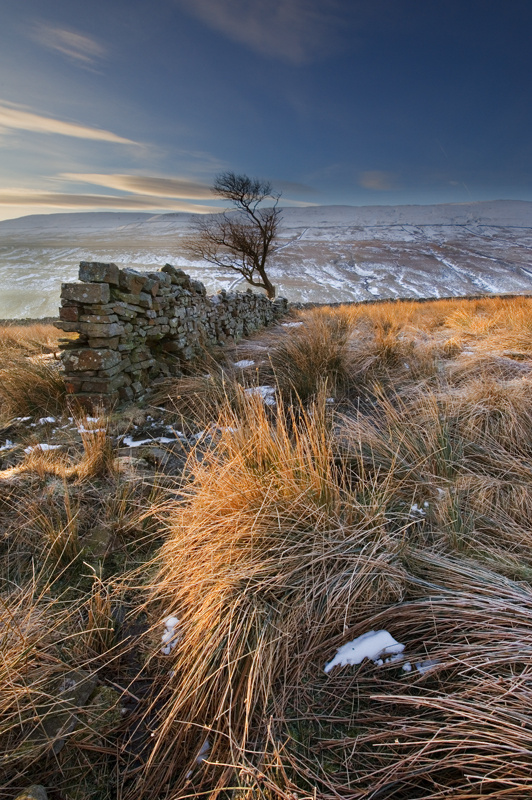 Frosty Morning 4 - Yorkshire Dales - Yorkshire Dales