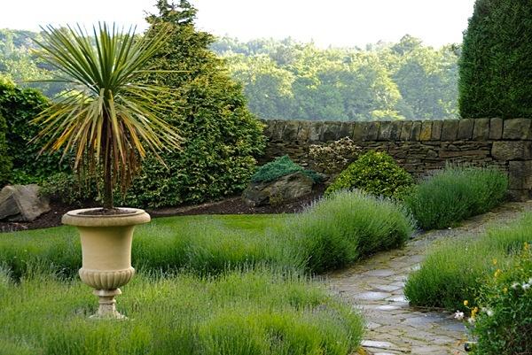 Lavender Garden - Gardens