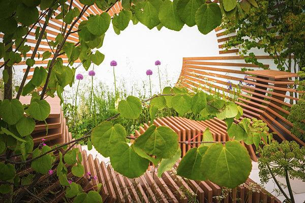 Molecular Garden - Gardens