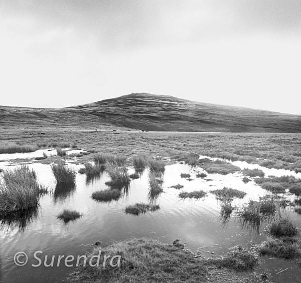 Black Down Dartmoor UK - Dartmoor