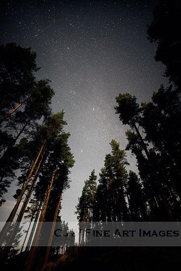 Pathfinders - Dark Skies