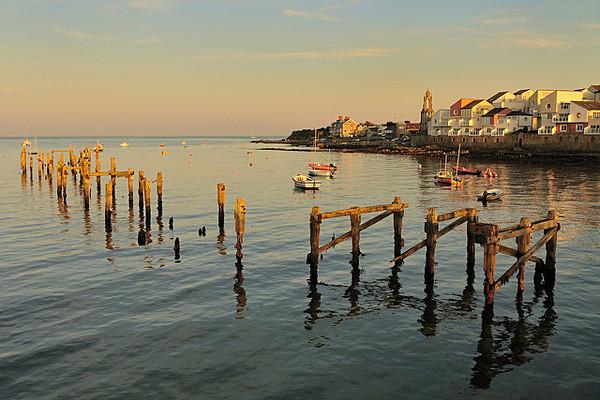 - Dorset