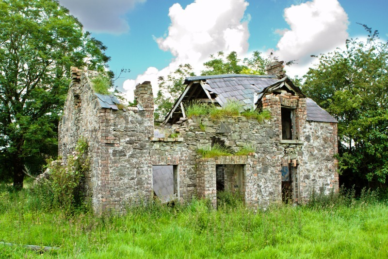 The Old Homestead - Local Scenes