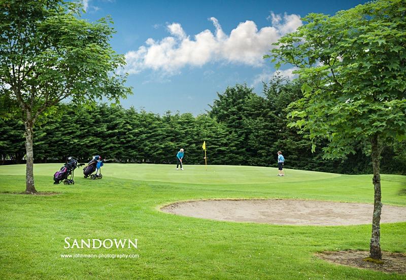 Sandown (2) - Omagh Golf Course