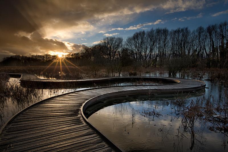 Riverside Nature Reserve, Guildford, Surrey