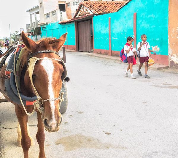 HORSE & SCHOOLBOYS - TRINIDAD DE CUBA - CUBA